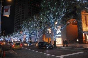 Area Keyaki-zaka dengan pencahayaan di pohon yang bernuansa salju.