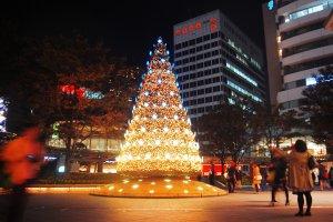 Nikmati kehangatan pencahayaan di pohon natal.