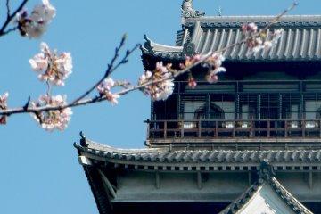 Exploring Hiroshima Castle