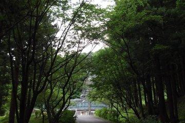 <p>ทางไปไดบุซึ</p>