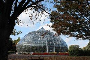 タマネギハウスという温室。個性的なデザインが素敵だ