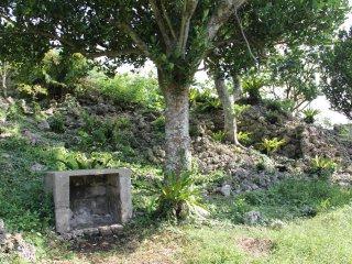 Có một vài đền thờ trong khu di tích và rất nhiều bức tường đá vôi đổ nát