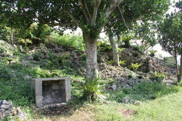 <p>There are a few shrines on the site and lots of crumbling limestone walls ringing the area</p>