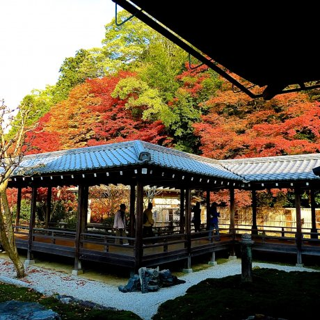 Kyoto Nanzen-ji's Hojo Garden