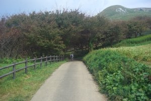 笔直的大道通往山间远方
