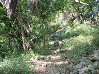 The steep ascent to the top is the most gentle at the beginning of the climb
