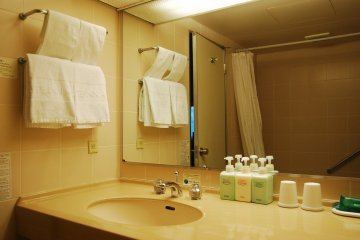 Bathroom and its amenities