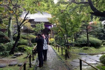 <p>The front garden is just a warm up for the real treat behind the temple.</p>