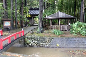 <p>The bridge from the parking lot to the temple is actually a gateway to a nature wonderland.</p>