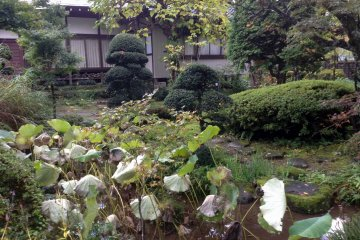 <p>A small nook of green and pond in&nbsp;Gyokusenji Temple in the town of Tsuruoka, Yamagata Prefecture</p>