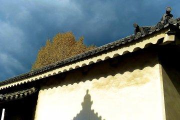 Jardins do Castelo Nijo-jo, Quioto