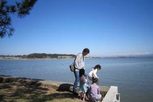 大勢の家族連れがピクニックに訪れる。片山津温泉街も最近は足湯を設けたり遊歩道を整備したりして、にぎわいへのテコ入れをしている