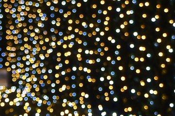 <p>Christmas light &quot;bokeh&quot;</p>