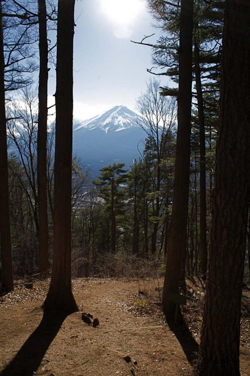 Mt Fuji from Kawaguchi-ko