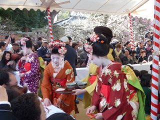 Geiko and maiko from the neighbouring geisha district gracefully serving tea and Japanese sweets