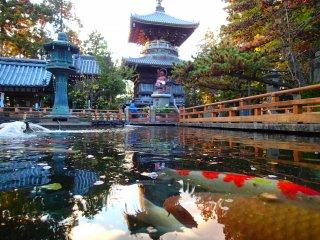 Une pagode à deux étages