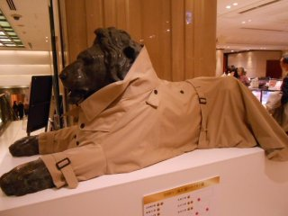 지하 1층의 사자