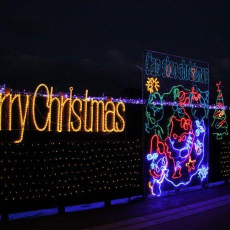 Okinawa Zoo Christmas Fantasy 2013