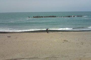 Japan Sea in May in front of 'Ataka-no-Seki'