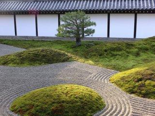 잔디, 나무, 벽, 모래, 빛 모두 서로 상호작용