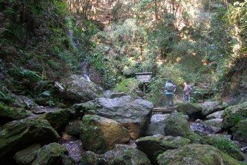<p>Admiring the waterfall</p>