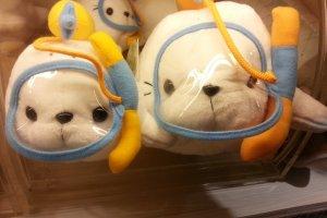 ตุ๊กตาแมวน้ำในร้านขายของที่ระลึก