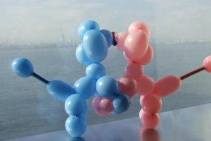 She created two balloon dogs kissing! They enjoyed the view, too!