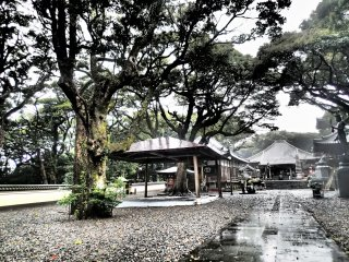 Temple grounds on a gray and rainy day