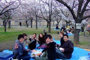 สถานที่ที่สามารถมาสัมผัสชาวญี่ปุ่นฮานามิยามซากุระบานได้