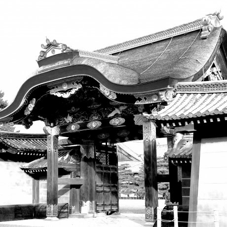 The Beauty of Nijo-jo Castle - 1