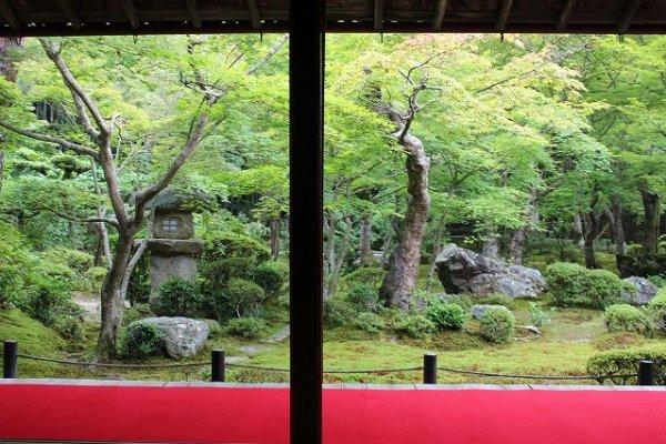 美しい和風庭園。春は緑、秋は紅葉がつとめて美しい
