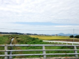 Undulating lane ways, fresh air and lack of traffic makes Mifune a great place to cycle or walk