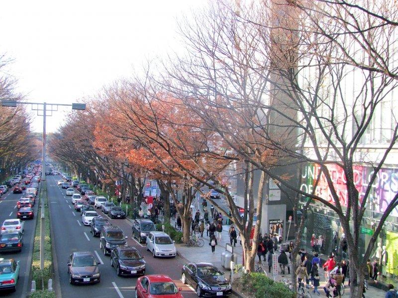 <p>Tokyo&#39;s trendy Omotesando</p>