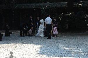 พิธีแต่งงานภายในศาลเจ้าเมจิ