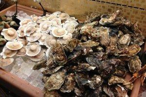 หอยนางรม หอยเชลล์ Tsubugai ก็มีให้เลือกทานไม่อั้น
