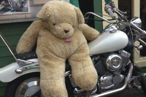 น้องหมียักษ์บนรถมอเตอร์ไซด์