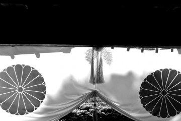大覚寺: 京都随一の穴場