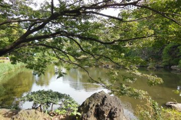 The Peaceful Hibiya Park