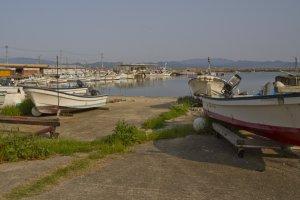 日本の漁港では必ず何か面白いものが見つかる