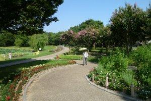 Vườn thực vật