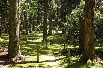 Santuario Heisenji Hakusan