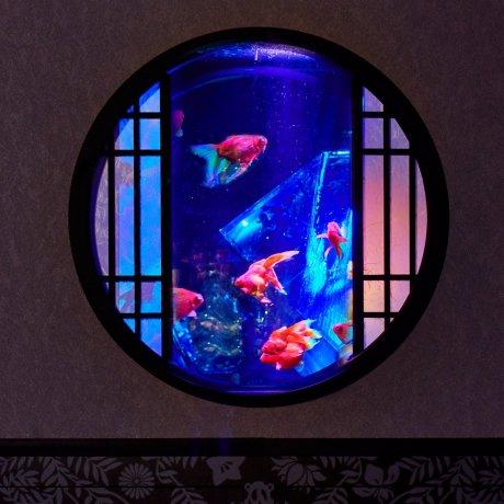 Museo Art Aquarium