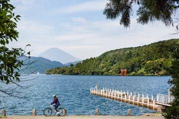 Hakone Mountain Bike Cruising Tour