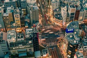 Tokyo Customized Private Tour
