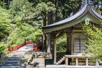 Sea of Japan Bike Tour (Self-guided)